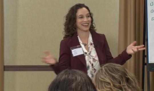 Laura Mendelow Consulting